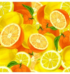 Citrus fruits seamless background vector image vector image