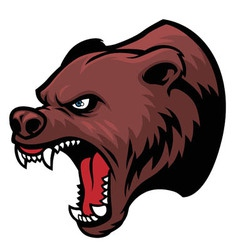 Grizzly bear head vector