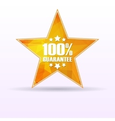 Star guarantee 100 vector