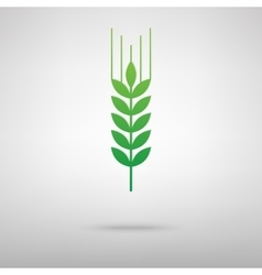 Wheat sign green icon with shadow vector