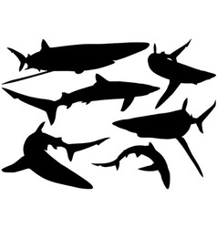 Blue Shark Silhouettes vector image