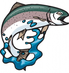 jumping trout vector image vector image