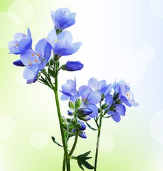 Blue watercolor flowers with bokeh vector