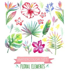 Watercolor tropical set vector