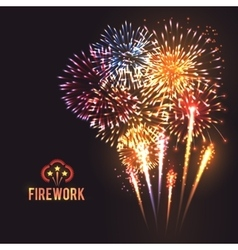 Festive firework black background poster vector