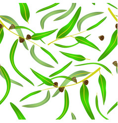 Eucalyprus seamless pattern vector
