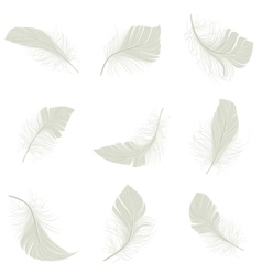 Feather Icons Set vector image