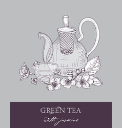 monochrome drawing of teapot cup of green tea vector image
