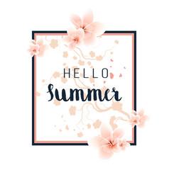 summer floral background vector image vector image