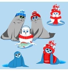 set of seals vector image