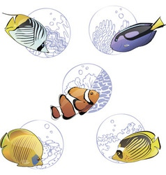 Set of colorful tropical fishes vector