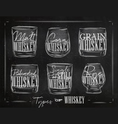Poster types whiskey vector