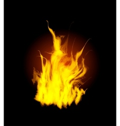 mesh flames vector image