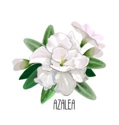 Azalea vignette vector