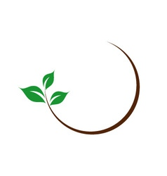 organic logo with green leaves vector image