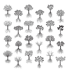 set black trees with leafs and roots vector image vector image