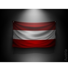 waving flag austria on a dark wall vector image