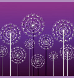 Purple background with white dandelion vector