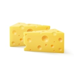 Triangular pieces of swiss cheese close up vector