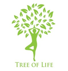 yoga and the tree of life vector image
