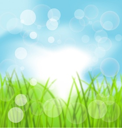 Spring Bokeh Background with Grass vector image