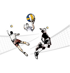 volleyball trio vector image vector image