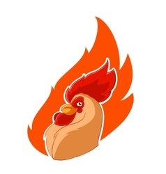 Rooster head in the fire vector