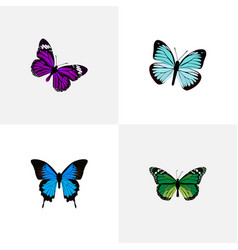 Realistic lexias butterfly common blue and other vector