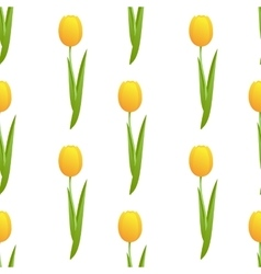 Tulip seamless isolated vector