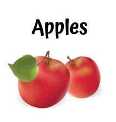 apples apples red vector image