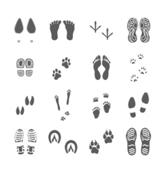 Various footprints set black on white vector