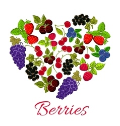 Heart berries of strawberry grape blueberry vector