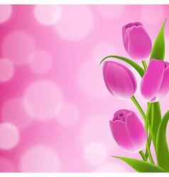 Border Of Tulips vector image