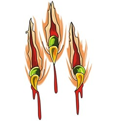 Claws scratches vector image