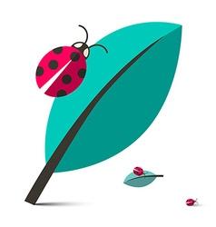 Ladybirds - Ladybugs on Leaf Isolated on Whi vector image