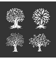 Beautiful oak trees silhouette set vector image
