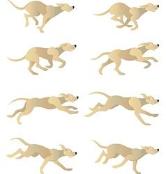 Dogrun cycle vector image