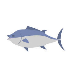 tuna cartoon flat vector image
