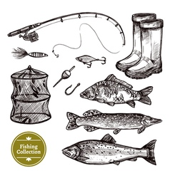 Fishing sketch set vector
