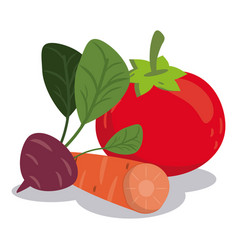 Organic healthy food vegetables nutrition image vector