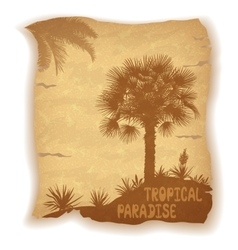 Palm Trees Silhouettes on Old Paper vector image