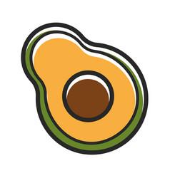 Half of fresh organic avocado isolated cartoon vector