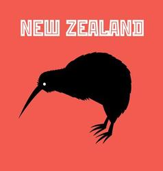 Graphic color symbol of new zealand kiwi bird vector