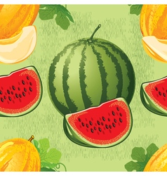 Seamless pattern of ripe melon and watermelon vector