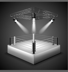 boxing ring background vector image