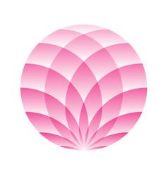 pink lotus circle - symbol of yoga wellness vector image vector image