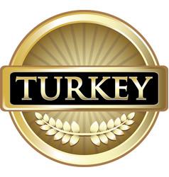 Turkey gold icon vector
