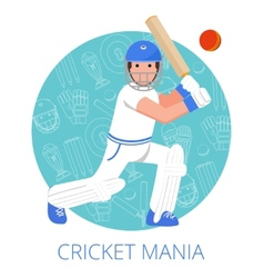 Cricket player icon poster print flat vector