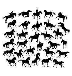 Equestrian Sport and Horse Activity Silhouettes vector image