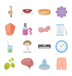 Health beauty food and other web icon in cartoon vector
